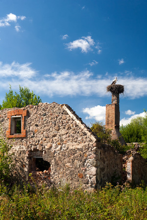 Two stork sitting in the nest as a hope for the best trumpet old ruined house