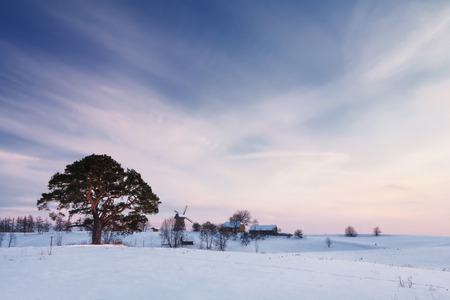 Winter rural landscape with pine trees and mill and rural houses at sunset. Latvia