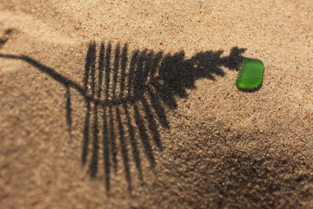 The shadow of the plant on yellow sand beach with a piece of bright green glass from the sea. Tilt-shift lens. Focus on the diagonal.