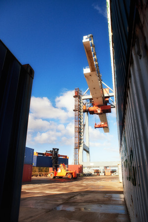 unloading: Loading and unloading of containers in the port with the help of cranes and forklifts on a bright sunny day