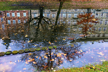 two ducks: Two ducks floating on the canals of the city reflected in the sky with clouds in the yellow leaves of the trees in autumn