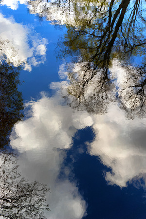 Spring trees and clouds on the blue sky reflected in the water waves with circles Stock Photo