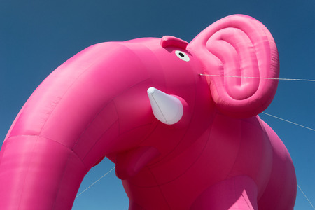 tusks: Inflatable pink elephant with white tusks against the blue sky tied ropes