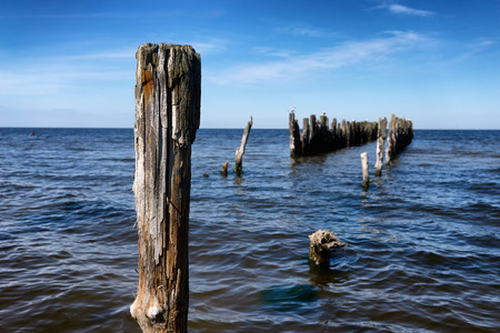 old pier: Battered wooden piles of the old pier in the Baltic Sea, leaving the horizon