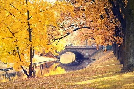 リガ市運河とラトビアの黄色の木が秋の公園の橋