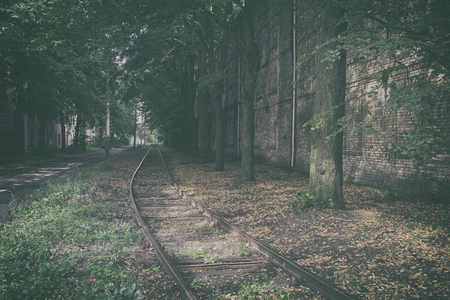 Mystical landscape with lost rails amidst a tree lane along a brick wall in the city of Riga