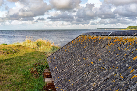 soltería: Yellow moss on the slate roof of the fishermans house on the coast of the Baltic Sea of Hiiumaa Island. Foto de archivo