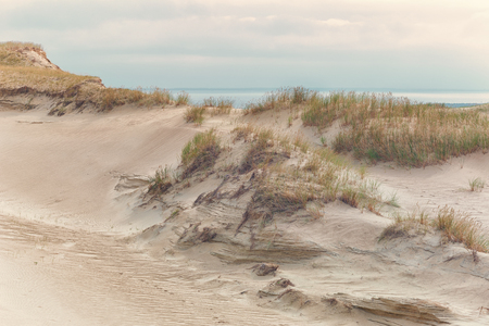 Yellow sand dunes with plants against the backdrop of the Baltic Sea in autumn Stock Photo