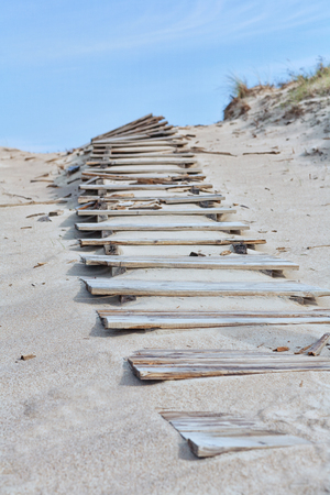 Wooden steps to the horizon in the sand dunes of the Baltic Sea