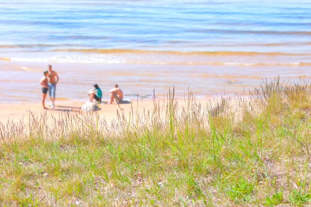 A company of young people on the sandy beach of the Baltic Sea against the backdrop of grass in the dunes