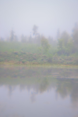 Foggy morning in the forest with calm water on the lake and the reflection of the sky. Blurry Stock Photo