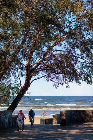 A bike ride along the beach of the Gulf of Riga in the Baltic Sea in the city of Jurmala in summer Фото со стока