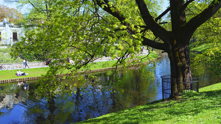 Urban residents of Riga are resting on the grass at the canal in a green park in the spring on a sunny day