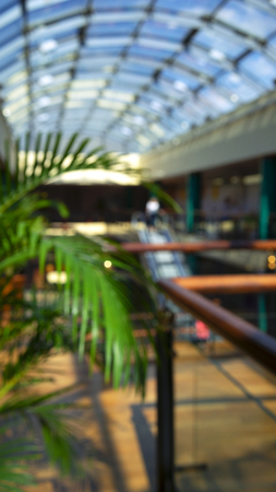 Urban background with palm tree in shopper in a shopping center with beautiful light through glass. Blurry Stock Photo