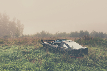 Black car in a high yellow grass in a field by the forest in the morning fog Stock Photo