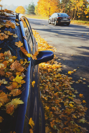 A car with yellow leaves on an asphalt road in the fall on a sunny day
