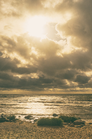 Bright summer sun in the clouds over the sea and sandy beach with green plants 版權商用圖片