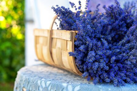 Purple lavender flowers in a brown wicker basket against a blooming summer garden