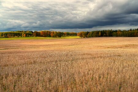 Mowed field against the background of autumn forest and rural house in cloudy weather with clouds in Latvia