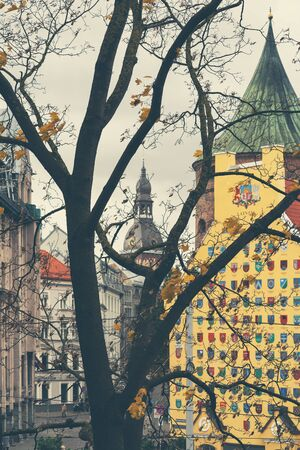 View through the trees in the park on houses and cathedrals with spiers in the old town of Riga in autumn in October Reklamní fotografie