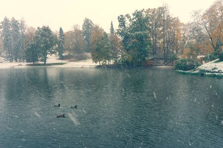 The first snow in September in a city park on a background of green trees by the pond. Cesis, Latvia 写真素材