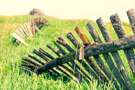 Wooden old ruined fence from boards in a field in summer with flowers and green grass. Latvia Stock Photo