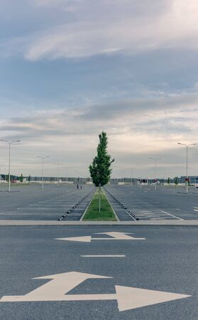 Minimalist empty parking at the mall in the evening. Lined lines and harmonious modern harmony 免版税图像
