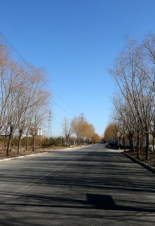 long road: The long road Editorial