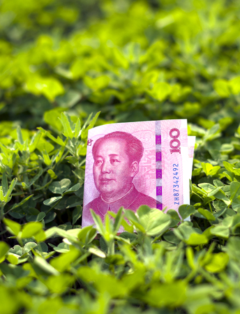 Chinese yuan on thick clover