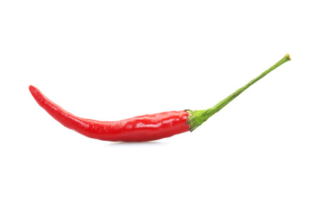 capsaicin: Red chili pepper on white Stock Photo