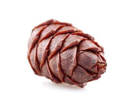 pine nut: Pine nut ball fruit