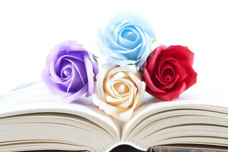 Colorful roses between the pages of a book