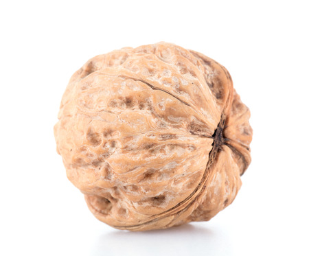 Dried fruit walnut 스톡 콘텐츠
