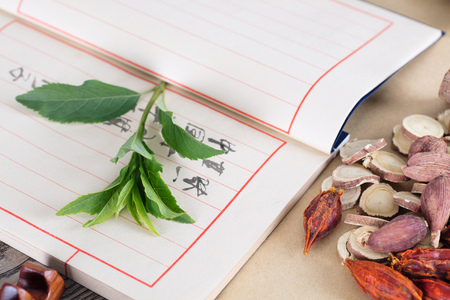 Traditional Chinese Medicine 写真素材