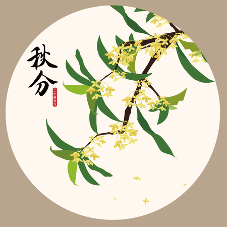 Autumn osmanthus illustration Иллюстрация