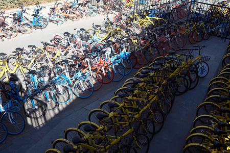 a large number of neatly shared bicycles