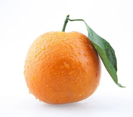 Fresh oranges 免版税图像