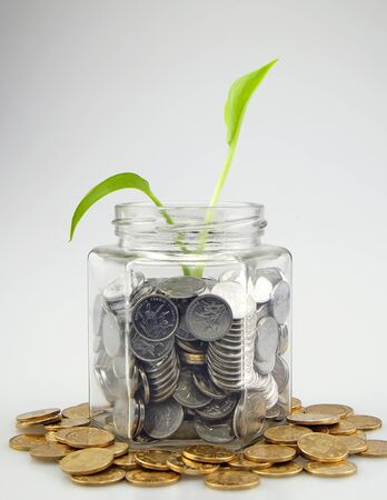Green shoots in a glass jar full with coins