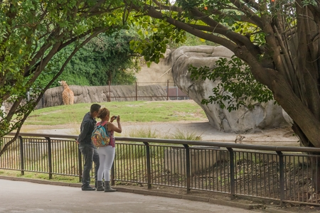 Chapultepec Zoo, Mexico City - October 29, 2009. A couple of young, anonymous lovers enjoy taking pictures at the Chapiltepec Zoo in Mexico City.
