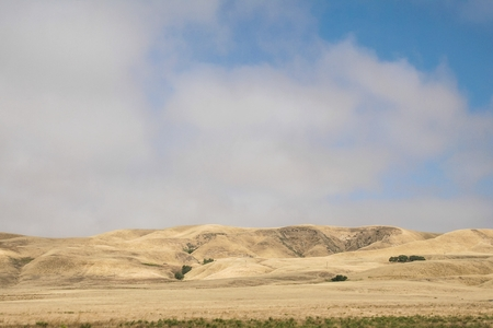 Panoramic view of some golden hills with a blue sky and white clouds in the state of California in the United States.