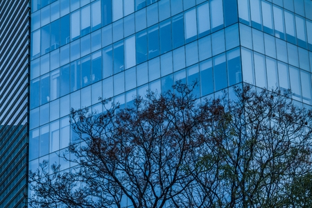Detail of an office and business building on South Insurgentes Avenue in Mexico City with blue windows and trees known as