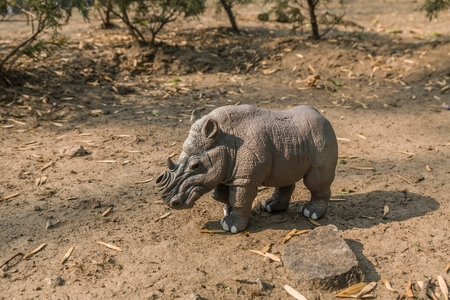 MEXICO CITY - MAY 21, 2017. Horizontal shot of a white toy rhino without a horn on a natural terrain. On March 20, 2018, in a reserve in Kenya, � � �,�� 新聞圖片
