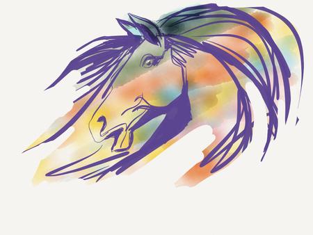 head paper: Horse head drawing