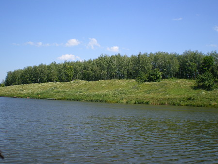 blue pond and green forest in the distance. Clear blue sky. Sunny warm summer day. landscape of Ukraine Stock Photo