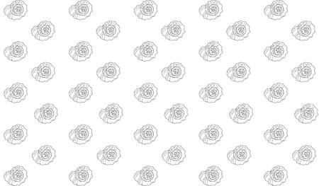 A hand-drawn black outline of a rapana shell on a white background. sea pattern Illustration