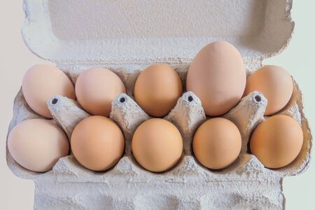 ten raw homemade chicken eggs in a cardboard tray one very large egg on a light background