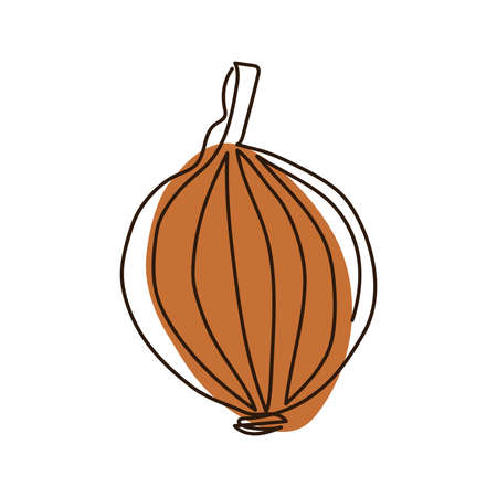 drawn bitter onion bulb in one continuous line on a brown spot background on a white background