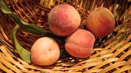 four ripe sweet light orange peaches with green leaves lie in a wicker basket Zdjęcie Seryjne