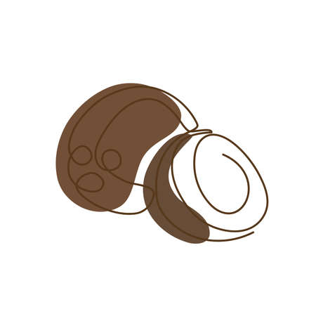 drawn by a solid dark line a coconut and a half of a coconut on a background of abstract brown spots on a white background