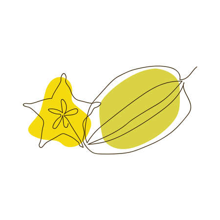hand-drawn whole carambola and half carambola in the form of a star in one solid line on a background of abstract spots of light green and yellow on a white background Ilustracja